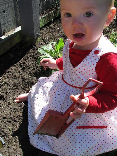 Sadie gardening