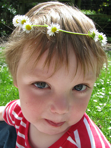 Charlie daisy